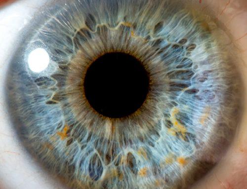 Las enfermedades de los ojos