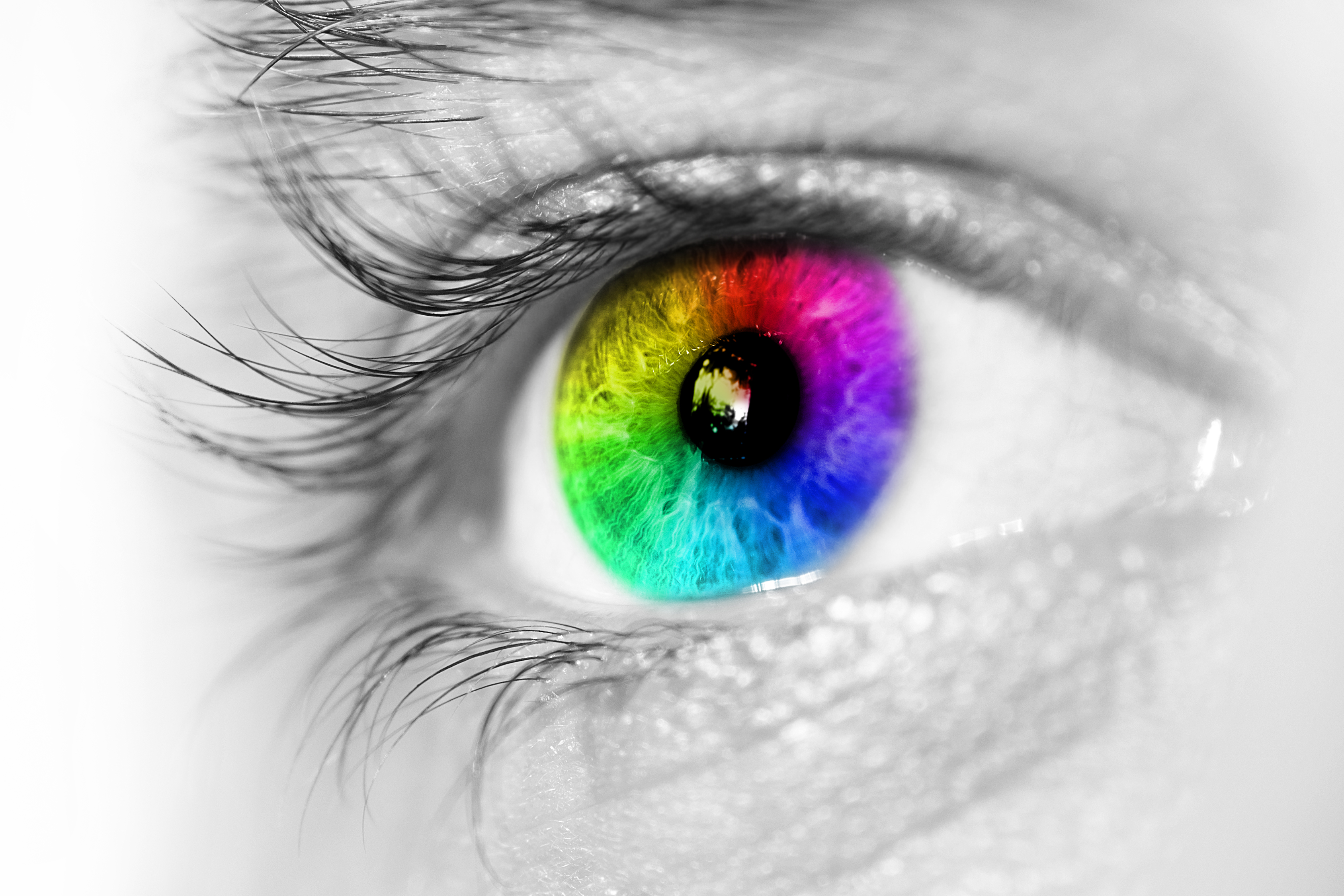 La visión tetracrómata ¿Cómo percibimos los colores?